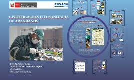 Copy of CERTIFICACION FITOSANITARIA DE MANGO