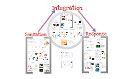 Copy of AP Bio- Physiology 8:  Sensation, Integration, Response