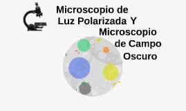 Copy of Copia de Microscopio de Luz Polarizada y Microscopio de Campo Oscuro