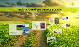 Implantation et entretien d'une pelouse durable