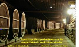 Expertiza pe filiera produselor derivate din struguri: băutu
