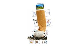 CSUF - Tobacco Cessation Services
