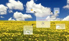 A Journey of a Carbon Atom