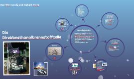 Die Direktmethanolbrennstoffzelle