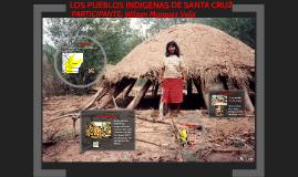 PUEBLOS INDIGENAS DE SANTA CRUZ