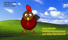 Industrielle Geflügelproduktion auf dem Vormarsch