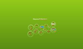 Ökosystem Fließgewässer