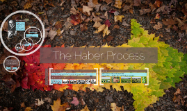 Copy of The Haber Process