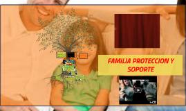 FAMILIA PROTECCION Y SOPORTE