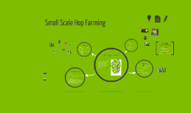 Small Scale Hops Farming