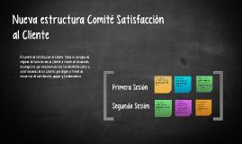 Nueva estructura Comité Satisfacción al Cliente