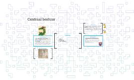 Centraal bestuur