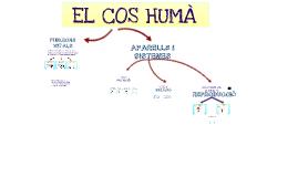 EL COS HUMÀ (FUNCIÓ DE REPRODUCCIÓ)