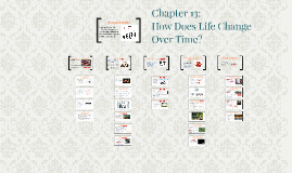 Chapter 13: How Does Life Change Over Time?