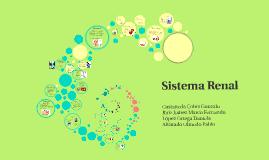 Copy of Sistema renal