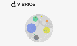 VIBRIOS
