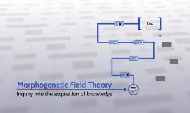 Morphogenetic Field Theory