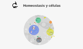 Copy of Homeostasis y organización del cuerpo humano