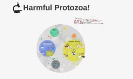 Harmful Protozoa!