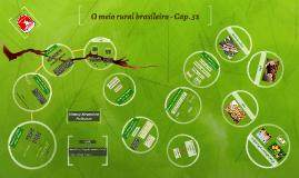O meio rural brasileiro - Cap. 32