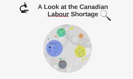 Canadian Labour Shortage