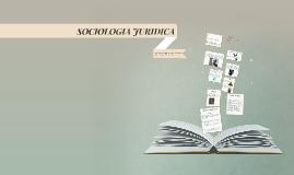 Copy of SOCIOLOGIA JURIDICA