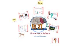 Elephants and Hofstede_LCC_2018