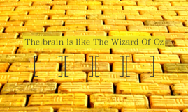 The brain is like The Wizard Of Oz