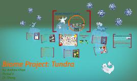 BIOME PROJECT:Tundra