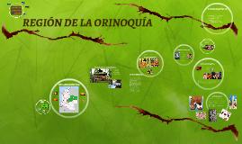 REGIÓN DE LA ORINOQUÍA