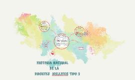 Copy of Historia Natural de la Diabetes Mellitus Tipo 2