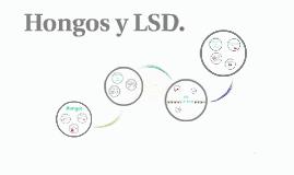 Hongos y LSD