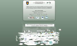 '' Ciclos estacionales e interanuales en el clima Antártico