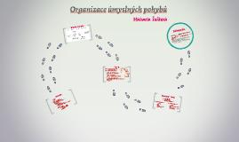 Organizace úmyslných pohybů