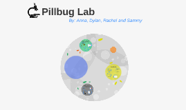 lab report pillbug Abstract of a lab report  on your lab reports pill bug lab report abstract a condensed summary of personal journal of all laboratory report ac.