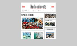 Copy of Medioambiente