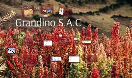 GRANDINO S.A.C 2