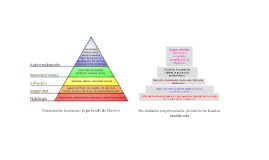 Pirámide de Maslow: necesidades empresariales