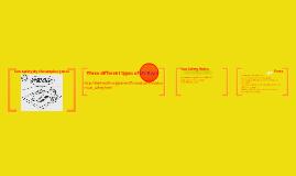 Sun Safety by Christopher Jones