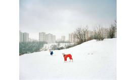 FOTOGRAFÍA CONTEMPORÁNEA RUSA