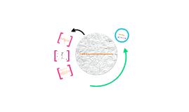 A resposta imune mediada por anticorpos (humoral)