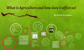 What is Agriculture and how does it affect us?