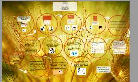 Bloque 4 Didáctica de la escritura en escuela primaria y secundaria Parte I