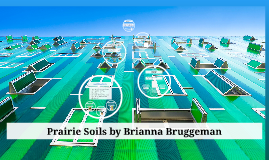 Prairie Soils by Brianna Bruggeman