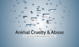 Animal Cruelty & Abuse