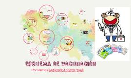 Copy of Copy of Esquema de vacunación