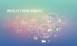 Proyecto y Medio Ambiente