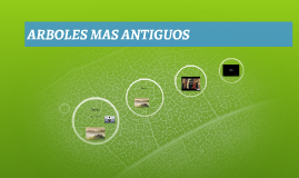 ARBOLES MAS ANTIGUOS