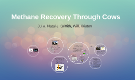 Methane Recovery Project