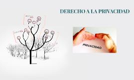Copy of DERECHO A LA PRIVACIDAD
